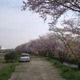 DSC_0026-1.jpg