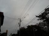 20121108_063930.jpg