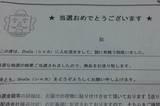 DSC_0233.JPG