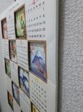 17-02-09-04-28-04-995_photo.jpg